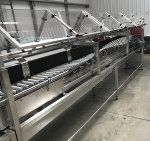 Roller Conveyor for Hot filling and bottle turning